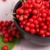 15 Растений, помогающих нормализовать работу щитовидной железы