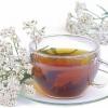 Чай из тысячелистника: польза и вред