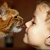 Глисты у детей: как узнать врага в лицо
