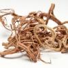 Красный корень: лечебные свойства и противопоказания