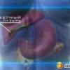 Народное лечение полипа желчного пузыря