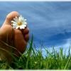 Народные средства лечения грибка ногтей