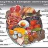 Повышенный холестерин в крови — мифы и реальность