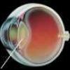 Вылечить катаракту народными методами